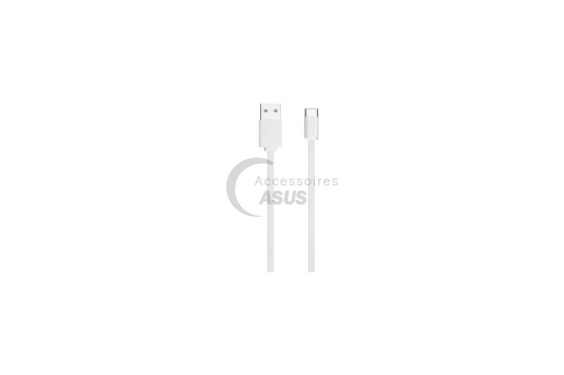 Cable docking d'alimentation USB type C